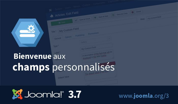 Joomla 3.7 custom fields